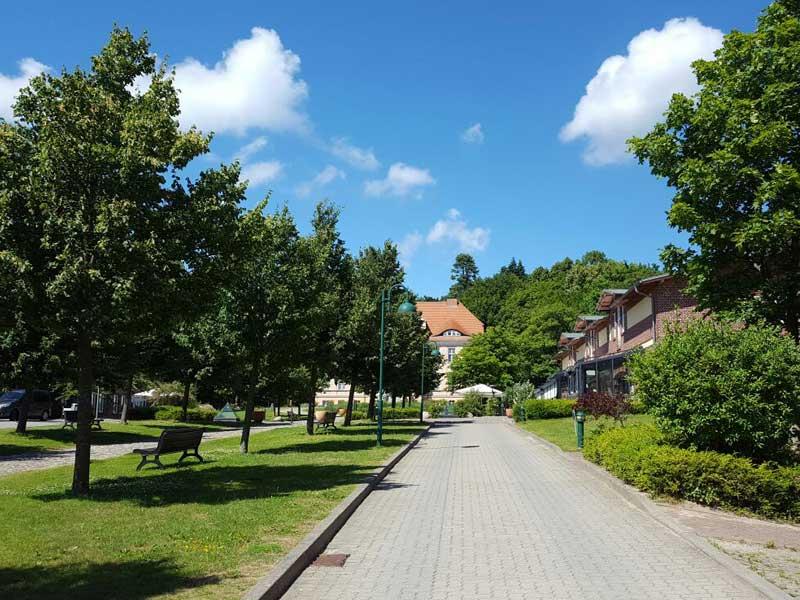 Urlaubsziel Nationalpark Jasmund